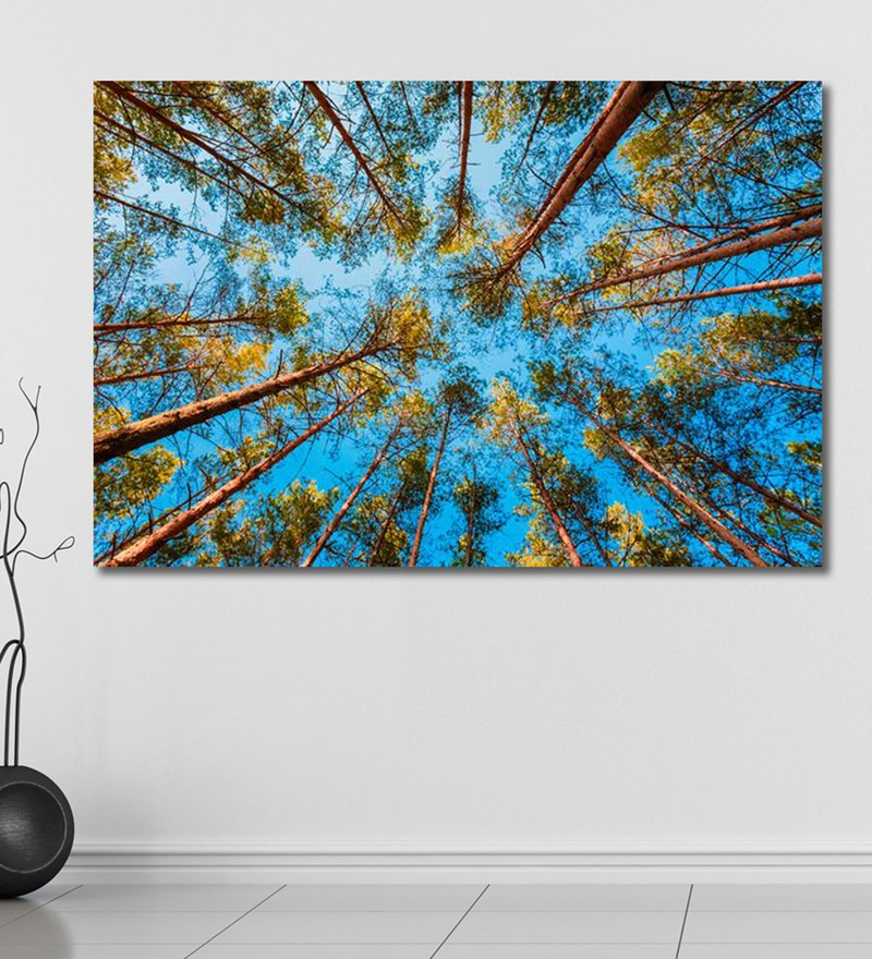 Vinyl 72 x 0.4 x 48 Inch Looking Up in Spring Pine Forest Painting Unframed Digital Art Print by 999Store