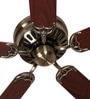 Anemos Cyclone 52 AB 52 x 8 Inch Designer Ceiling Fan