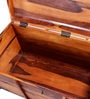 Bernake Trunk in Honey Oak Finish by Amberville