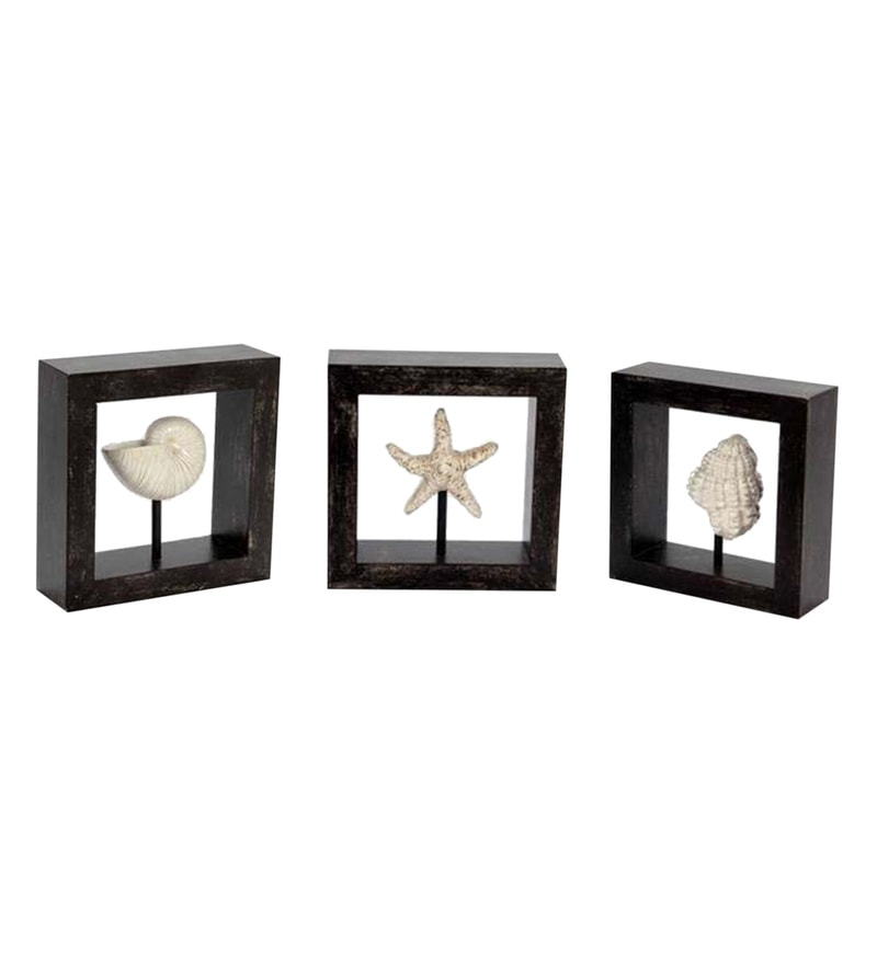 Black & White Wood Seashell Wall Hanging Frames by V Decor - Set of 3