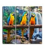 Hashtag Decor Macaws Engineered Wood 6 x 18 Inch Framed Art Panel