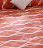 Bombay Dyeing Brown 100% Cotton Queen Size Bed Sheet - Set of 3