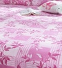 Pink 65%Poly 35%Cotton Queen Size Bedsheet - Set of 3 by Bombay Dyeing