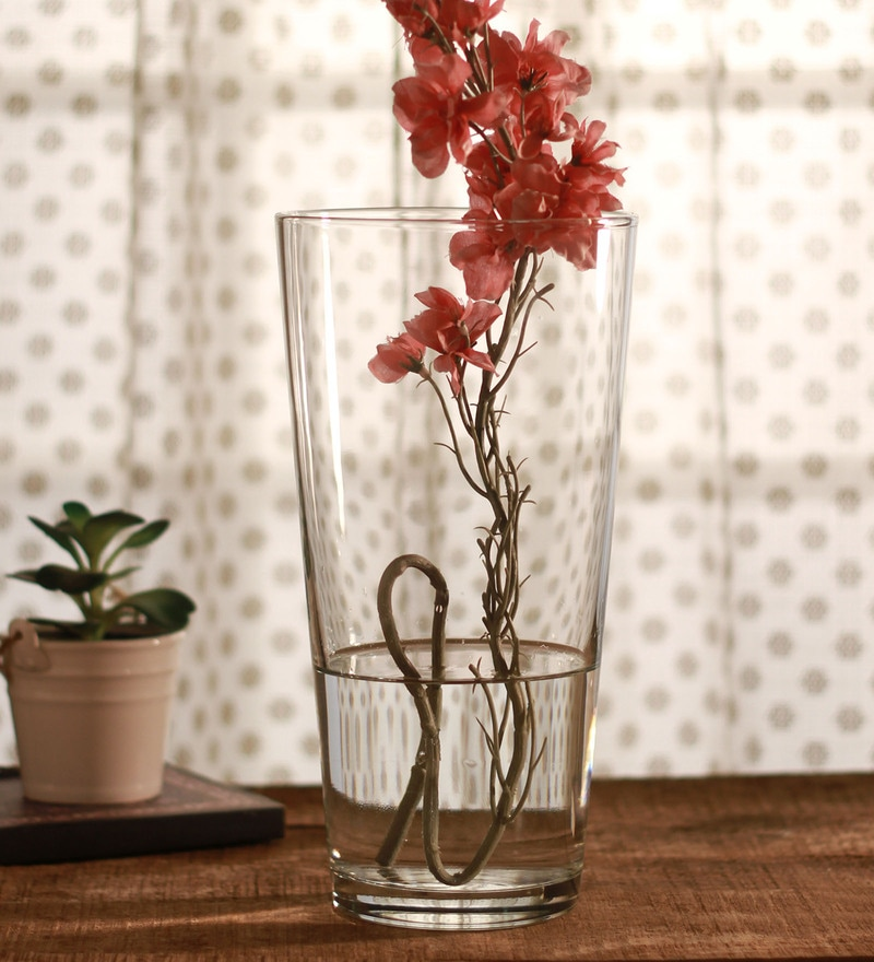 Clear Glass Botanica Boranica Vase by Pasabahce