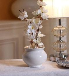https://ii2.pepperfry.com/media/catalog/product/d/e/236x260/decardo-white-ceramic-matki-shape-planter-decardo-white-ceramic-matki-shape-planter-p0pmdp