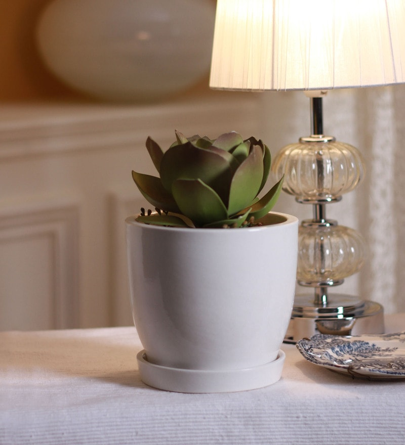 Ceramic Table Top Planter w Saucer in White by Decardo