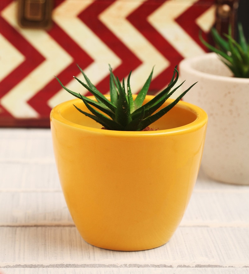 Yellow Ceramic Table Top Planter by Decardo