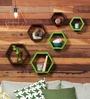 Hexagonal Modular Wall Shelf (Set of 6) in Brown & Green Finish by DecorNation