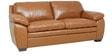 Doris Three Seater Sofa in Tan Brown Colour by Star India