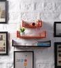 Driftingwood Orange & Brown MDF U Shape Floating Wall Shelves - Set of 3