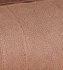 Elisa One Seater Sofa in Dark Brown & Beige Colour by Evok