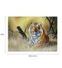 Fizdi Canvas 28 x 0.2 x 20 Inch Tiger Art 3 Unframed Art Painting