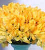 Yellow Artificial African Lily Flower Bunch Set by Fourwalls