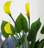Yellow Polyester Artificial Calla Lily Plant by Fourwalls