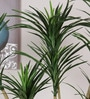 Green Polyester Decorative Artificial Yucca Plant by Fourwalls