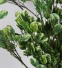 Fourwalls Green Polyester 1692 Leaves Artificial Jade Plant