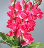 Fourwalls Multicolour Fabric Gladiolus Artificial Flower Bouquet