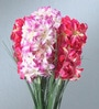 Multicolour Fabric Tall Artificial Hyacinth Flower Stem - Set of 4 by Fourwalls
