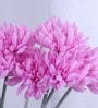 Purple Synthetic Artificial Chrysanthemum Stem - Set of 8 by Fourwalls
