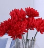 Red Synthetic Artificial Chrysanthemum Stem - Set of 8 by Fourwalls