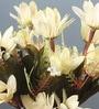 White Fabric Artificial 5 Head Silk Chrysanthemum Flower Bouquet - Set of 2 by Fourwalls