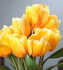 Yellow Fabric Tulip Artificial Flower Bouquet by Fourwalls
