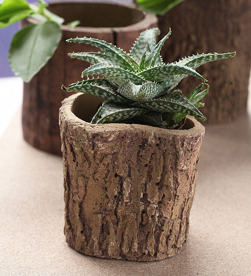 Woodlike planter - Natural Look by Gaia