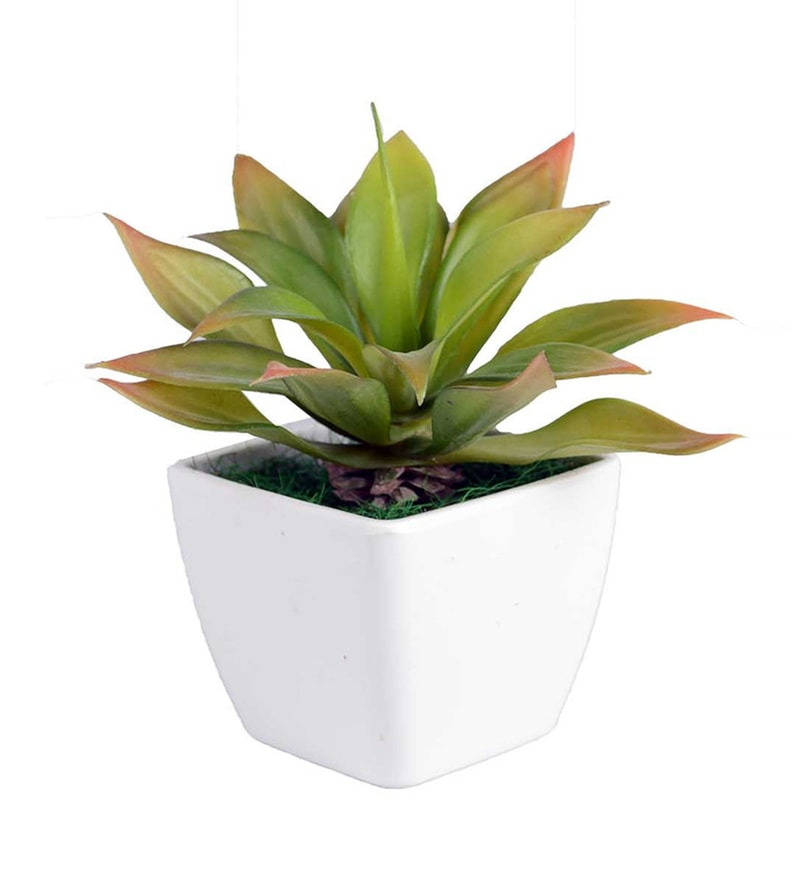 Green PVC & Synthetic Artificial Echivera Leaf Succulent by Ginni Bloom