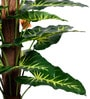 Green PVC & Synthetic Artificial Variegated Philodendron Plant by Ginni Bloom
