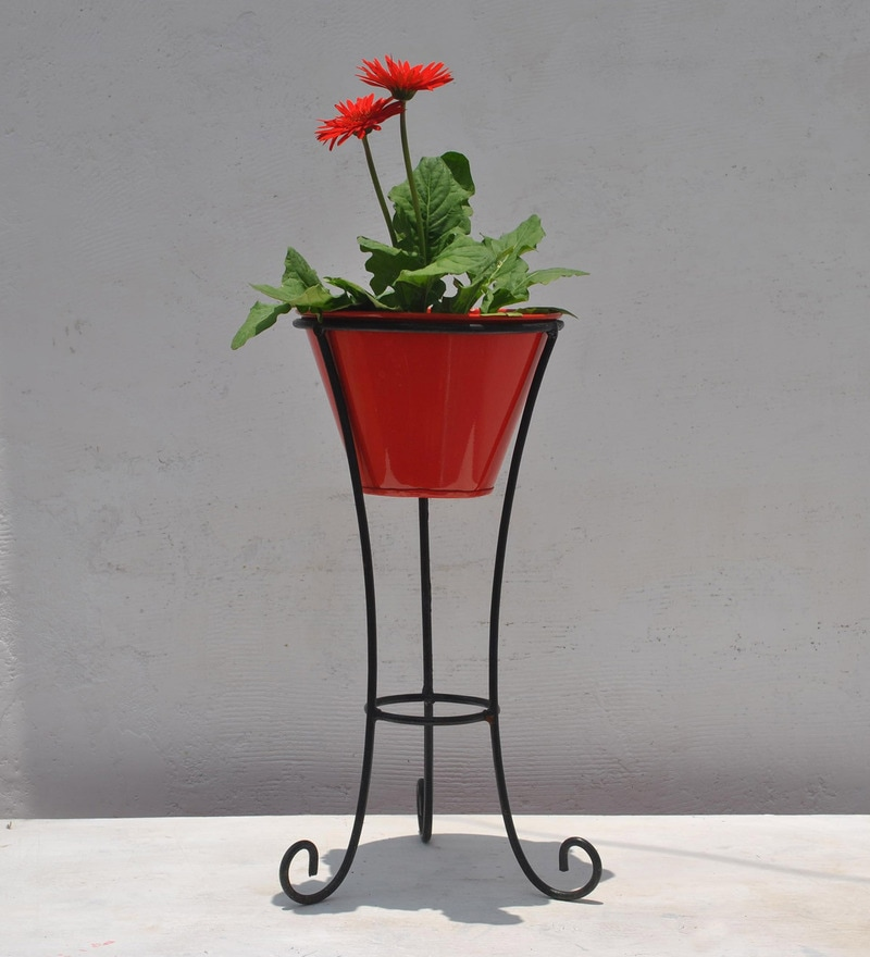 Metallic Black Stand with Red Pot by Green Gardenia