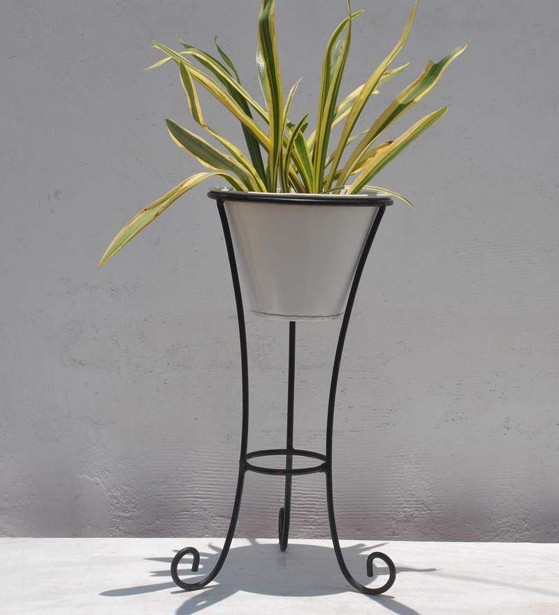 Metallic Black Stand with White Pot by Green Gardenia