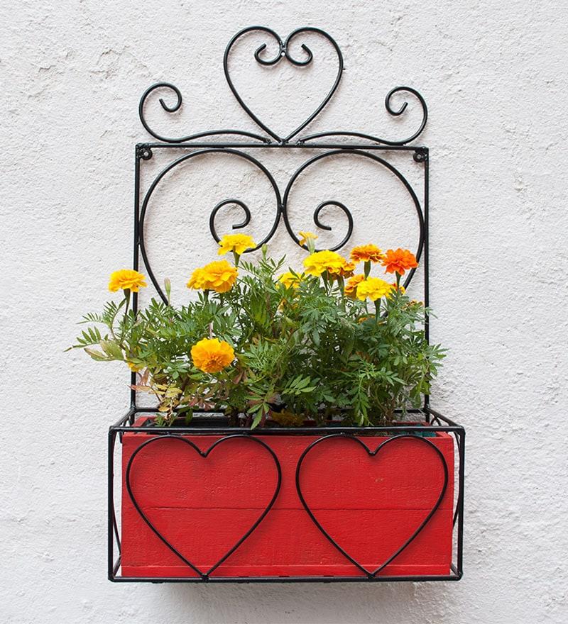 Buy Black Iron Wall Planter With Yellow Wood Box By Green Gardenia