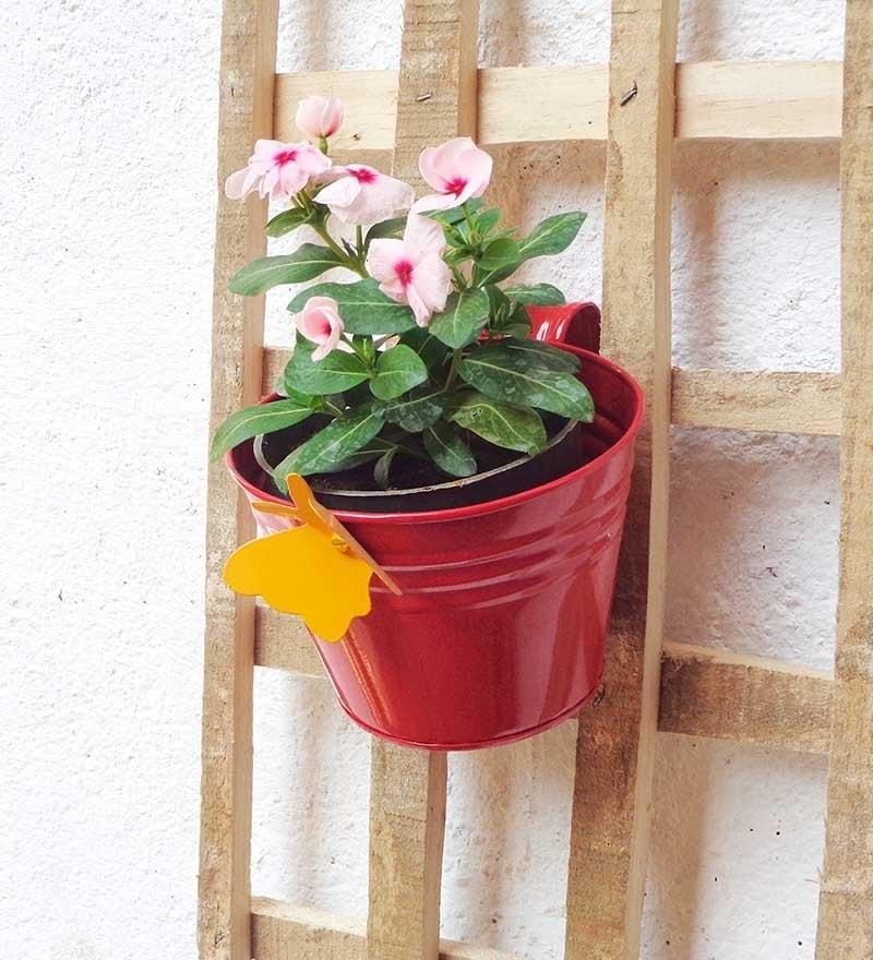 Red Metal Railing Bucket by Green Gardenia