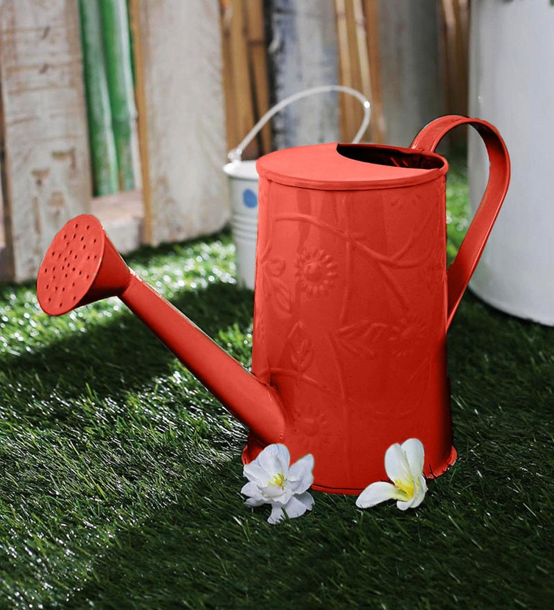 Green Girgit Design Embossed Watercane in Red Colour