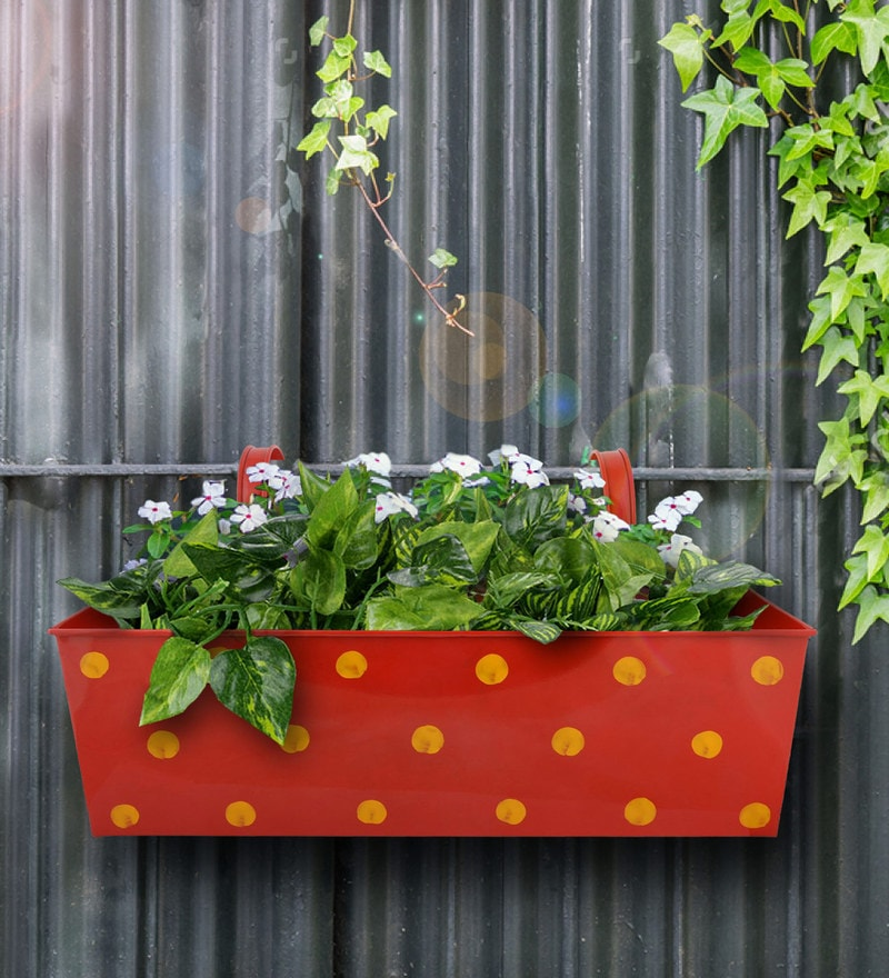 Polka Dot Rectangle Planter in Red Colour by Green Girgit