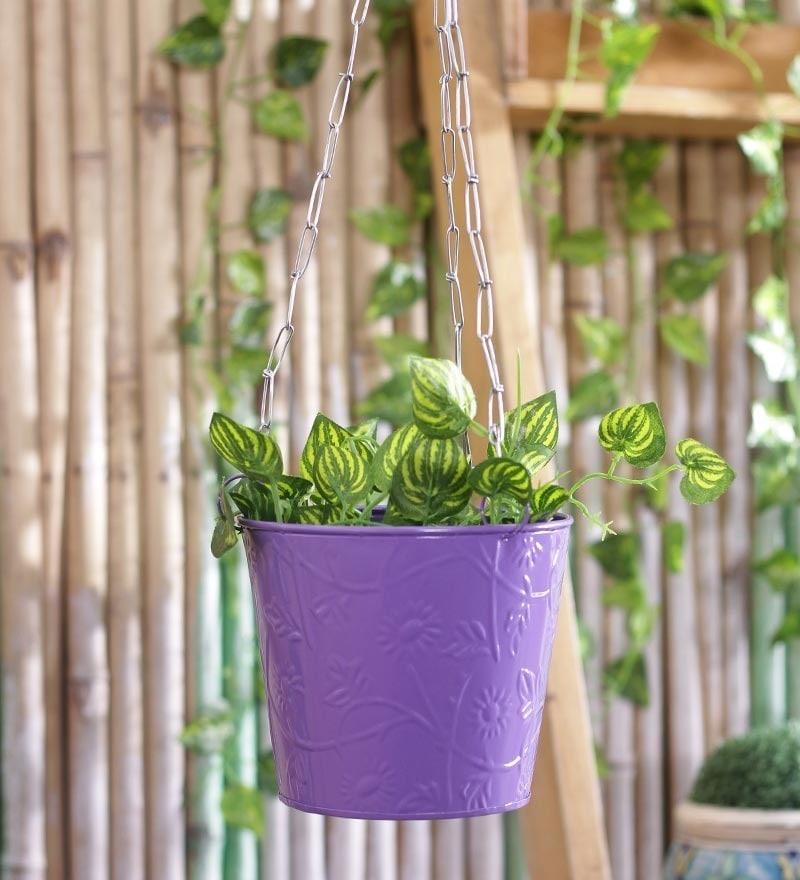 Purple Hanging Bucket by Green Girgit