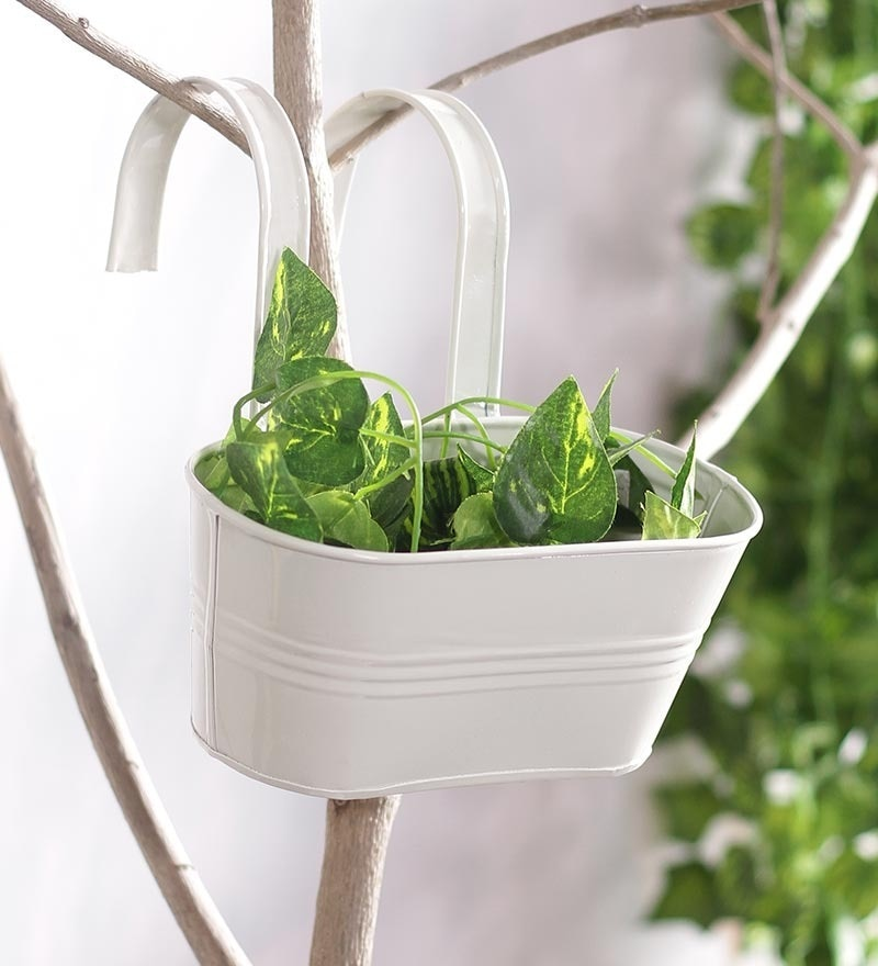 White Oval Railing Planter by Green Girgit