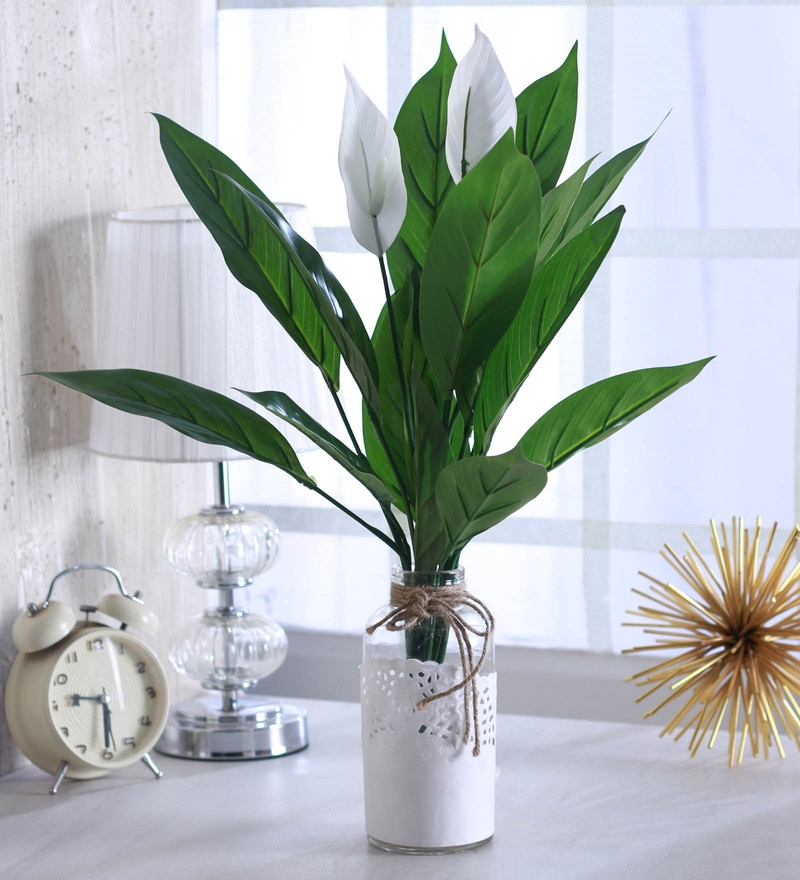 Green Plastic Decorative Artificial Spathe Plant by Fourwalls