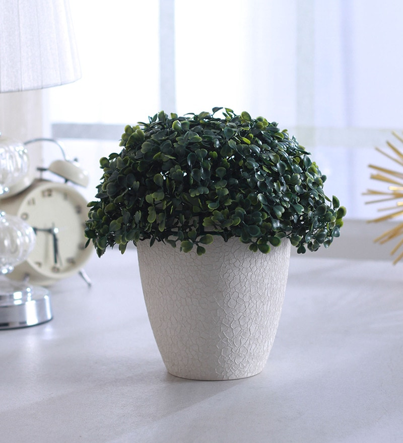 Green Plastic Eucalyptus Topiary Ball Plant by Fourwalls - Set of 2