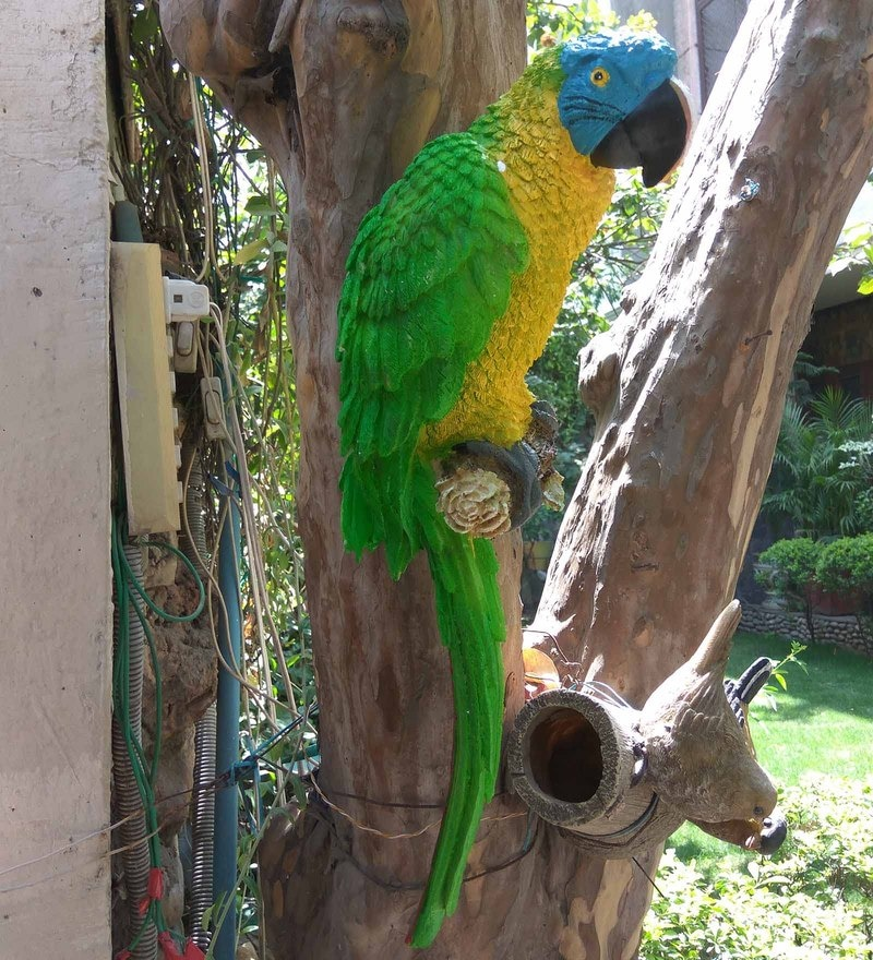 Green Resin 18.5 Inches Height Large Wall Parrot Garden Decor by Wonderland