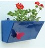 Green Gardenia GI metal Wall Planter with Butterfly -Dark Blue