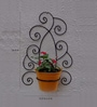 Green Gardenia Wrought iron Tuscan wall bracket with metal bucket