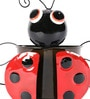 Green Girgit Black Beetle Planter