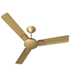 Fans Buy Fans Online In India At Best Prices Pepperfry