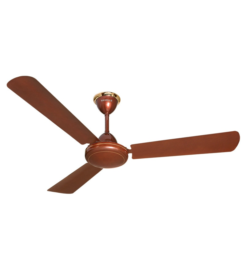 Havells 1200 Mm Fan Ss-390 Pearl Brown
