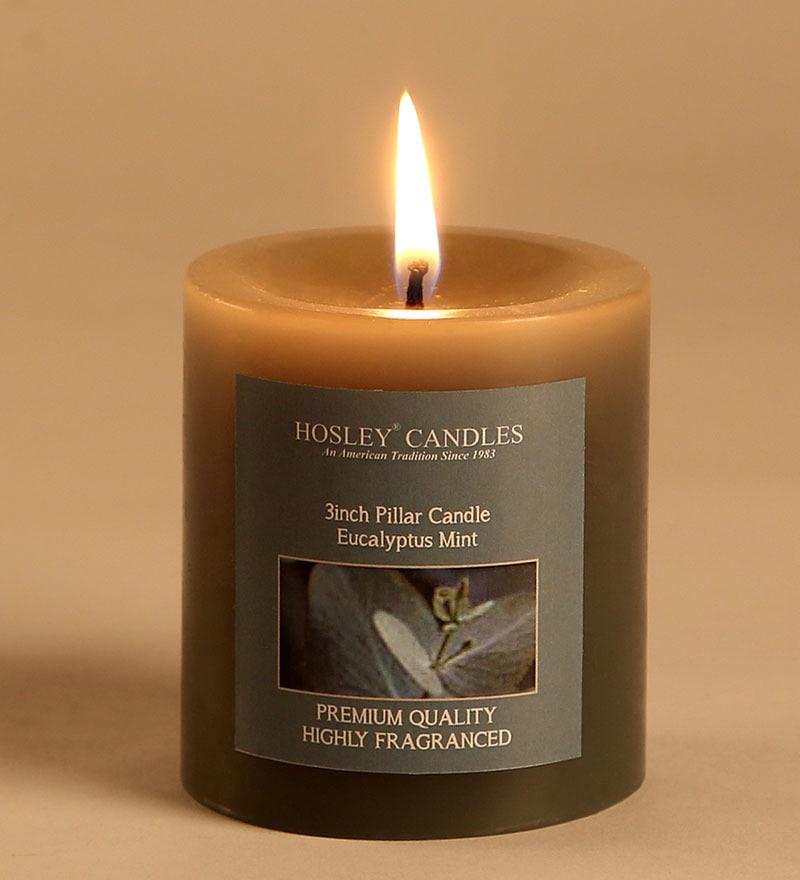 Eucalyptus Mint Grey Pillar Candle by Hosley