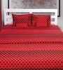 House This Square Design Red Cotton Double Bed Sheet (with Pillow Covers) - Set of 3