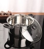 Stainless Steel Induction Friendly Dutch Oven with Glass Lid by Kitchen Essentials