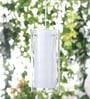 Glass Metal Pendent Multiples HL3613-1 by LeArc Designer Lighting