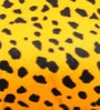 Lushomes Golden Yellow Polyester 12 x 12 Inch Leopard Skin Printed Cushion Covers - Set of 2